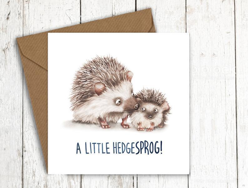 a little hedgesprog