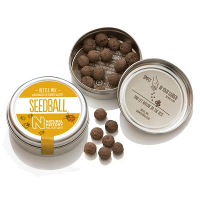 seedball_product-beetle-06